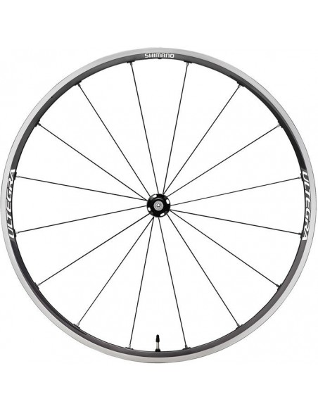 Complete Wheels